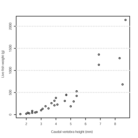 Fish Live Weight and Caudal Vertebra Height Scatterplot